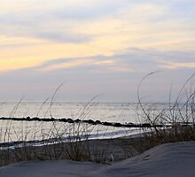 Cape May point 10x30 crop by BILL JOSEPH