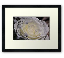 Tears of Happiness Framed Print