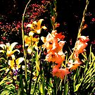 Chicago Botanic Garden series 2 by dandefensor