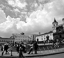 The Plaza by Valerie Rosen