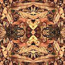 Banksia by Jennifer Eurell