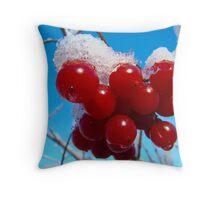 Winter 1 Throw Pillow