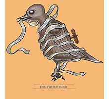 Bird Of Virtue  Photographic Print