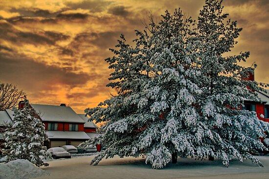 Winter Sunrise by vadim19