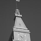 Historic D & F Clocktower - Denver by Frank Romeo