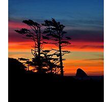 WIND SWEPT SUNSET Photographic Print