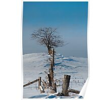 Tree On A Hill In The Snow Poster
