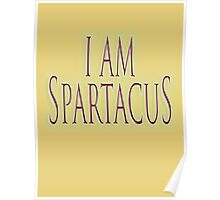 I am Spartacus! No I am Spartacus! Blood & Sand, Gladiators, Coliseum, Combat, Death Poster