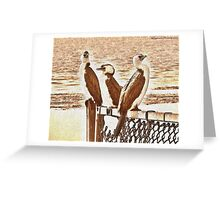The Three blind birds at sea side  Greeting Card