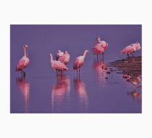 Roseate Spoonbills, As Is T-Shirt