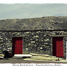 Three Red Doors - Penrhosfielwo, Wales by newshamwest