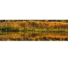 Reflections In Time - Tidbinbilla Wetlands, Canberra ACT - The HDR Experience Photographic Print