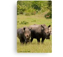 Don't mess with us Canvas Print