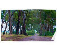 Wet Summer - Australian Landscapes Poster