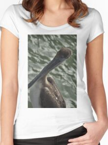 Young Brown Pelican, As Is Women's Fitted Scoop T-Shirt