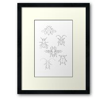 Insect Invasion Framed Print
