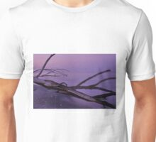 Before Sunrise at Stump Pass, As Is Unisex T-Shirt