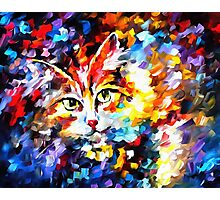 Cat 2 Photographic Print