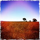 On the Road to Yass by Ashlee Betteridge