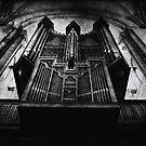 Organ by Citizen