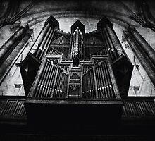 Organ by Nikki Smith
