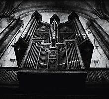 Organ by Nicola Smith