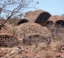 Series: MAPUNGUBWE NATIONAL PARK - World Heritage Site by Magaret Meintjes
