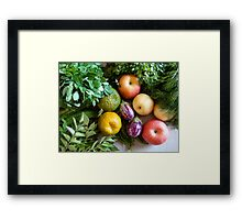 Vegetables & Fruits - Healthy Food Framed Print