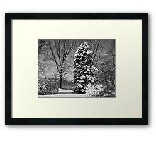 Winter of My Soul Framed Print