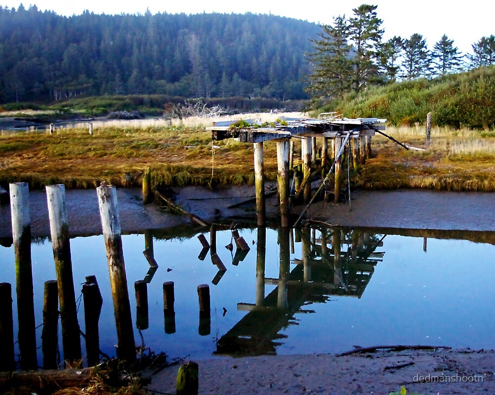 reflecting bridge by dedmanshootn