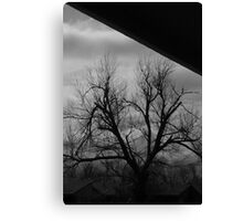 01-20-11  Safe On The Porch Canvas Print