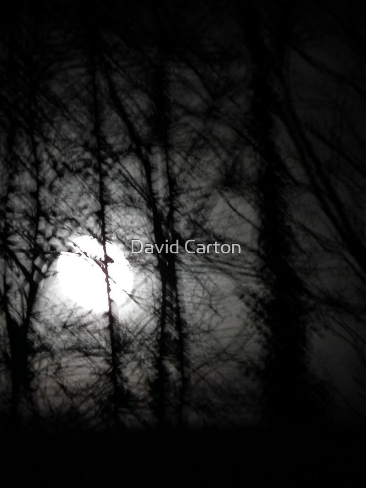 Beware the moon.... by buttonpresser