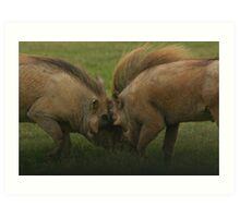 Warthogs at war - Addo Elephant National Park Art Print