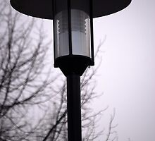 Lamp on a Rainy Day II by vbk70