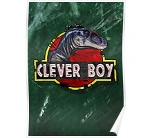 Clever Boy Poster