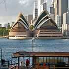 Opera House, Sydney by David Mapletoft
