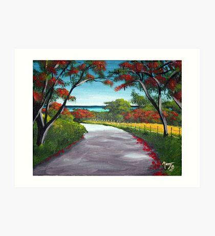 Flamboyant Road Rincon, Puerto Rico Art Print