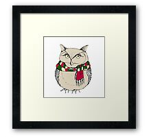 Funny owl in a colorful scarf. Framed Print