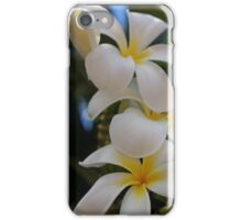 Hawaiian Plumeria iPhone Case/Skin