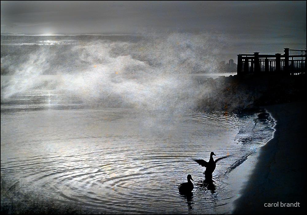mist rising by carol brandt