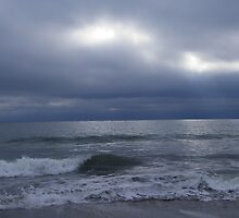 Cold and Blustery by MaryinMaine