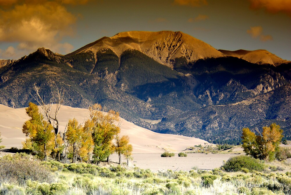 Great Sand Dunes by Dawn Parker