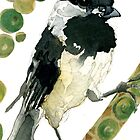 Poecile Atricapillus (Black Capped Chickadee) by Carol Kroll