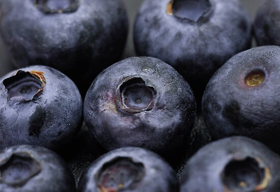Blueberries by Shehan Fernando