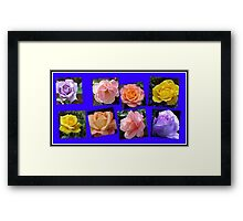 Roses of Many Colours Collage Framed Print