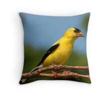 A Sunny American Goldfinch Throw Pillow