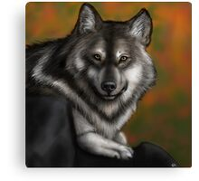 Timber Wolf - Autumnal  Canvas Print