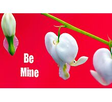 Be My Valentine Card Photographic Print