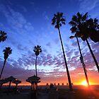 Venice Beach Sunset by Yashani Shantha