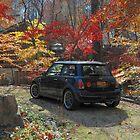 Emma in Autumn by Steve Mezardjian
